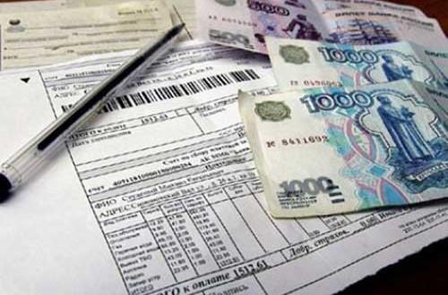 На какие субсидии может претендовать многодетная семья при приобретении участка под ИЖС