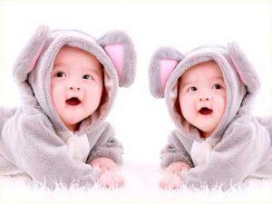Маткапитал при рождении двойни